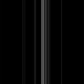 VALLE_Negro_propagacion_II_33x50